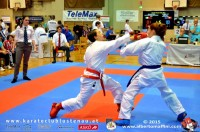lions_cup_2015_1307